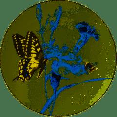 HEINEN - Wandborden - Koninginnepage 15,5cm