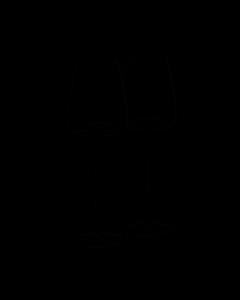 ZIEHER - Vision - Wijnglas 0,34l Fresh s/2 h24