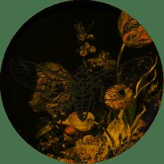 HEINEN - Wandborden - Nachtvlinder 26,5cm